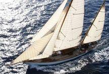 Sailing / by Danielle