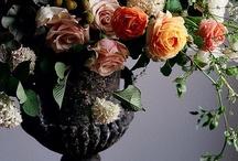 Floral Arrangement Ideas / by Sparrow King