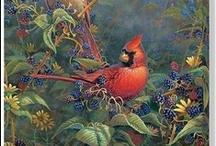 Cardinal Birds / I love Cardinals / by Lori Hughes