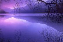 I Love Purple Too
