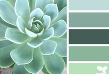 Color Combos / Greens, Browns, Yellows ... / by Sandy Ann