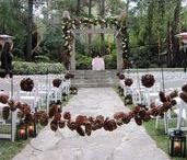 Pine Cone Wedding / For natural elegance add pine cones to your wedding accents for an affordable rustic touch. From pine cone bridal bouquets to grooms boutonniere's , pine cones make an inspired wedding theme.