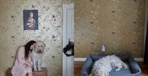 CLOUD7 DOG LOVERS / Cloud7 upscale and stylish products for dogs and dog owners matching a discerning home interior.