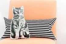 Pillows.Cushions