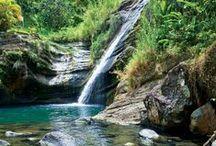 #PureGrenada / #Grenada #GND #PureGrenada #PureParadise #SpiceIsland @GrenadaBnB #GrenadaBnBLife #Paradise #TikiTime #SeaTurtles #Surf #Scuba #Snorkel #Sail #WaterFalls #Hike #Bike #Rainforest #Beaches #Mango #Coconut #Rum #RumPunch #Caribbean #Travel #Beaches #Dining #Liming