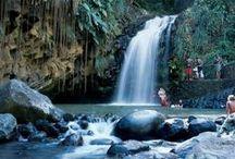 Grenada Waterfalls / #WaterFalls #Grenada #GND #PureGrenada #PureParadise #SpiceIsland @GrenadaBnB #GrenadaBnBLife #Paradise #TikiTime #SeaTurtles #Surf #Scuba #Snorkel #Sail #WaterFalls #Hike #Bike #Rainforest #Beaches #Mango #Coconut #Rum #RumPunch #Caribbean #Travel #Beaches #Dining #Liming  #SevenSisters #Annandale #Concord #RoyalMtCarmel #Victoria