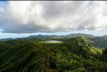 Grenada Grand Etang / #Grenada #GND #PureGrenada #PureParadise #SpiceIsland @GrenadaBnB #GrenadaBnBLife #Paradise #TikiTime #SeaTurtles #Surf #Scuba #Snorkel #Sail #WaterFalls #Hike #Bike #Rainforest #Beaches #Mango #Coconut #Rum #RumPunch #Caribbean #Travel #Beaches #Dining #Liming      #BelongAnywhere  #DontGoThereLIVEthere
