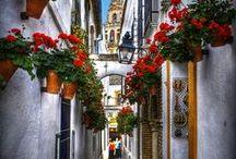Spain / by Pablo Aranguren