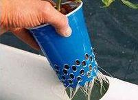 5 - Gardening: Aquaponics / Aquaponics