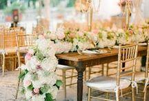 Flowers / by Brooke Hughes