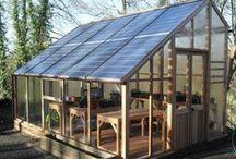 5 - Gardening: Greenhouse & Cold Frames / Greenhouse & Cold Frames