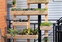 Outdoor Project Ideas / Outdoor project ideas, DIY, garden, yard, lawn ideas for spring and summer.