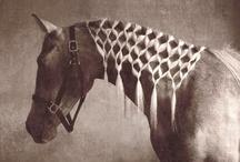 equestrian / In riding a horse we borrow freedom.