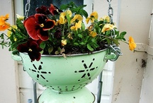 Gardening Smart / Recycle, reuse, repurpose