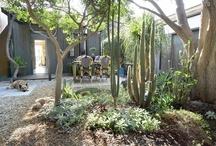 Garden & Landscape Design / by Los Angeles Times