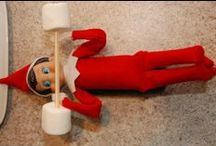 Elf Shelf / Christmas 2013, once Hadley is old enough to search for her girlie elf.....I'll let her name her etc.   These are cool idea for Momma & daddy to use:)