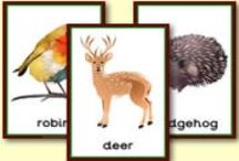 Education ~ Animals / Animal themed crafts and learning activities.