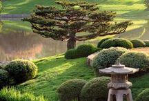 Building a Japanese Garden ♣♣