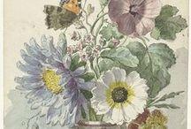Art: 18th century (Misc)