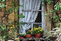 Lovely Windows of the World / by Sheila Ridgway