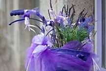 Purple / by Sheila Ridgway