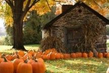 """"""" Autumn is a second spring where every leaf is a flower.""""--Albert Camus"""