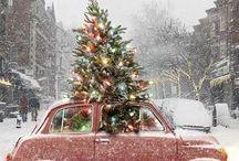 xmas/winter season