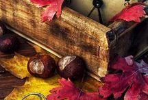 Herbst (Dekoration) ~ autumn ~ fall