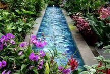Garden Ideas / by Lisa Blackwell-Oresman