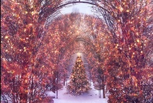 Christmas / by Debby Elmer