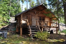 Cabins to die for / by Debby Elmer