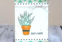 WFC - Planted/Potted Stamp Sets & Pots Die (Succulents)