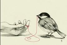 Illustrations / by Drika Drikolina