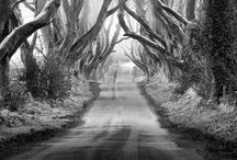 photography, black&white / by Natacha Thies