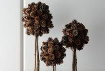 holiday decor ideas / by heather sager