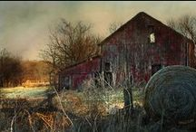 Barns, Farms & Etc. ~ / by Bonita Damico