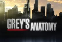 My Favorite TV Shows / public