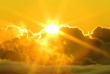 All Things Yellow or Gold / The colors of Sunshine / by Connie Perteet