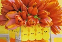Easter / by Stephanie Lapham-Howley