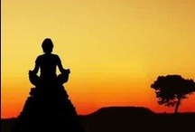 Meditations / by g hoffman