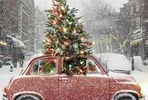 CHRISTMAS CHEER / by Debbie Hollis