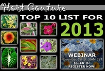Top Ten of 2013 / It's hard to pick just ten from the trendy new varieties Hort Couture has for 2013 but here is the short list of must-haves everyone will love! / by Hort Couture