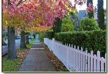 picket fences / by susan cox interiors inc.