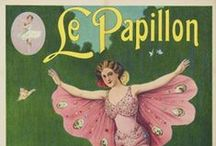 petit papillon / for the little butterfly