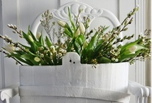 HOME*All Things White & Beautiful*Decor* / PLEASE ONLY (7)PINS PER VISIT~Every thing looks beautiful in a shade of White~It adds light and gives any space a fresh, clean appearance. Everyone can use white in their decor...from traditional, shabby chic, or modern, to rustic  eclectic and minimalist. Please only HOME DECOR! NO ANIMALS,FOOD or CLOTHING~TO JOIN THIS BOARD>COMMENT ON ANY PI POSTED BY ME / by Anna Eberhart