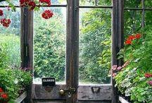 garden shed / by Rita Johnson