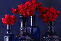 COLOR ˜ BLUE & RED / by Brenda Clayton