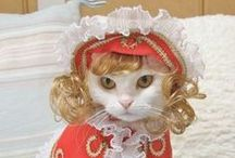 Little Cats / Pets / by Debra Alexander