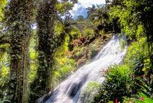 Jamaica / by Katie Harding