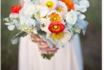 bouquets / by amy heacock